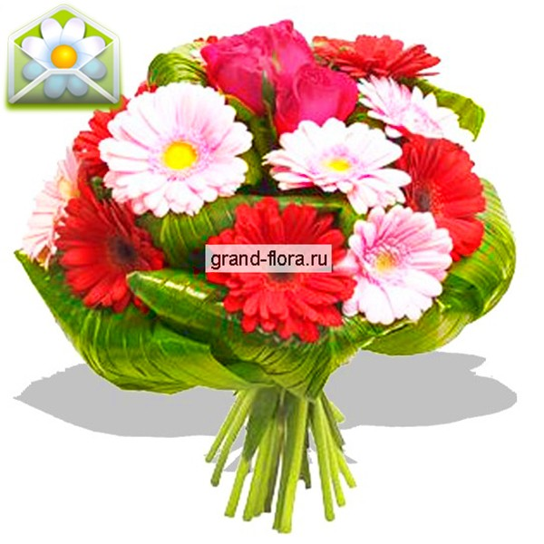 Цветы Гранд Флора Квест фото
