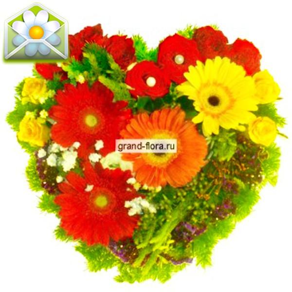 Цветы Гранд Флора Шахерезада фото