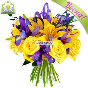 Серенада солнечной долиныБукет из желтых лилий и роз, дополненный нежно-фиолетовыми ирисами - опьяняет своим ароматом и поражает легкостью и очарованием. Чудесная мелодия вдохновила наших флористов на создание уникального сочетания цветов и цвета, которое получило название ...<br>