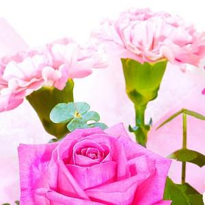 РомантикаХотите произвести неизгладимое впечатление на девушку и оставить в ее душе след? Тогда подарите ей букет из розовых гвоздик и розовых роз Романтика. Он способен не только усладить взор, но и положить начало новой и светлой любви, ведь девушки любят ...<br>