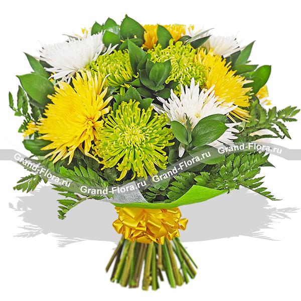 Свежесть утра - букет из разноцветных хризантем