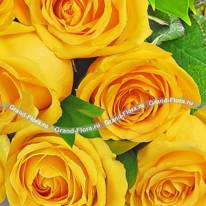 Букет желтых розВеликолепный подарок для партнера по бизнесу или просто мужчине. Да-да, Многие неправильно понимают значение желтого цвета, если говорить о розах. Желтая роза – это маленькое домашнее солнце. Солнце это мужской символ, а множество солнц в одном буке...<br>