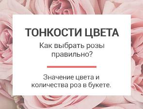 Тонкости цвета: Как выбирать розы