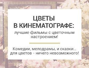 Цветы в кинематографе