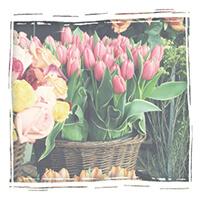 Магазин цветов в Рязани