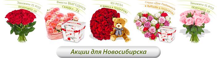 Акции для Новосибирска