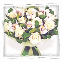 орхидеи купить в Тольятти