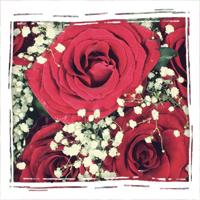 букеты из роз в Новосибирске