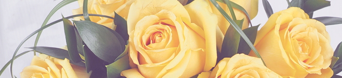 Закажите цветы в интернет-магазине Гранд-Флора