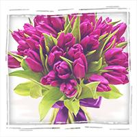 заказать букет фиолетовых тюльпанов