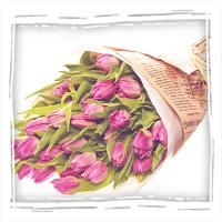 фиолетовые тюльпаны с бесплатной доставкой