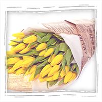 желтые тюльпаны с бесплатной доставкой