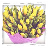 заказать букет желтых тюльпанов