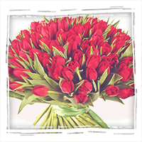 красные тюльпаны с бесплатной доставкой