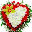 Сердце Аполлона